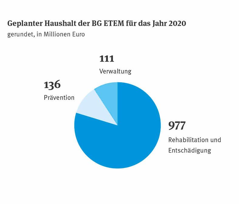 Die Grafik zeigt ein Krisdiagramm in Blautönen mit den Anteilen an den geplanten Ausgaben der BG ETEM in Millionen Euro.
