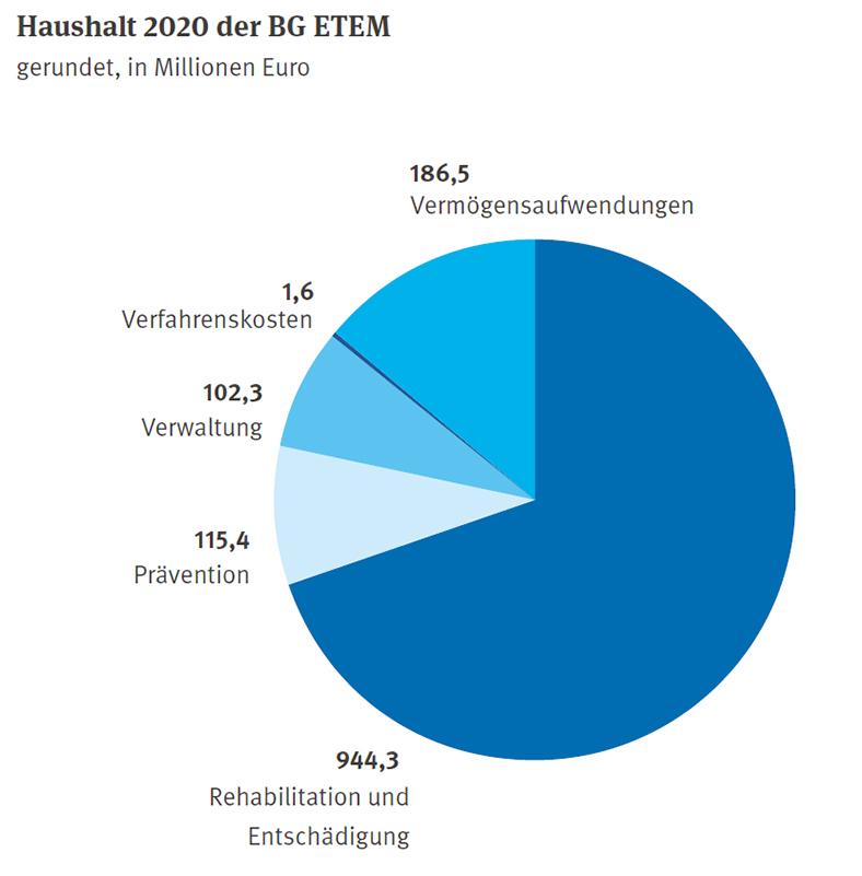 Kuchendiagramm in Blautönen mit Beschriftung Ziffern und Text außen, Anteile an den Ausgaben 2020 der BG ETEM.